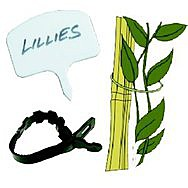 Plant Ties & Labels